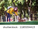 training   girl and dog corgi... | Shutterstock . vector #1185354415