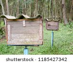 garden in southen thailand   Shutterstock . vector #1185427342