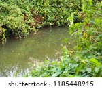 canal overflow channel to... | Shutterstock . vector #1185448915