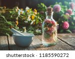 clover tincture or infusion ... | Shutterstock . vector #1185590272