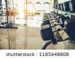 dumbbell exercise equipment in...   Shutterstock . vector #1185648808