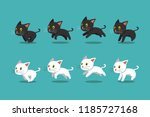 Stock vector vector cartoon black cat and white cat running step for design 1185727168