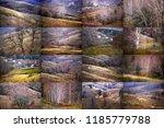 autumnal relief  forest fields... | Shutterstock . vector #1185779788