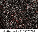 Closeup Shot Of Elderberry...