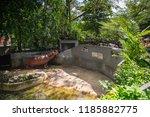bangkok  thailand   sept 1  ... | Shutterstock . vector #1185882775