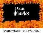 dia de los muertos  flor de... | Shutterstock . vector #1185938932