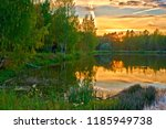pond surrounded by forest  with ... | Shutterstock . vector #1185949738