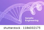 dna sequence. wireframe dna... | Shutterstock .eps vector #1186032175