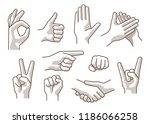 set of different gestures hand  ... | Shutterstock .eps vector #1186066258
