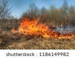 prairie fire. dry grass blazes... | Shutterstock . vector #1186149982