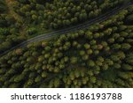 Aerial View A Forest And A...