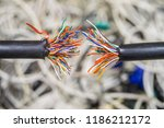 a damaged multi core cable is... | Shutterstock . vector #1186212172