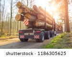 forestry activity  large trucks ... | Shutterstock . vector #1186305625