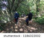 rottingdean  uk   september... | Shutterstock . vector #1186322032