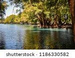 lake camecuaro in michoacan...   Shutterstock . vector #1186330582