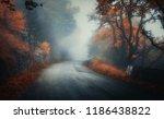 dark autumn forest with rural...