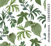 a variety of green foliage on a ... | Shutterstock .eps vector #1186450015