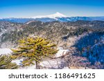 viewpoint from el cani... | Shutterstock . vector #1186491625