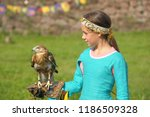 a young bird of prey sitting on ... | Shutterstock . vector #1186509328