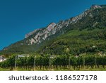 mountains in the alps seen from ... | Shutterstock . vector #1186527178