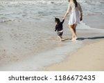 a western women walking into... | Shutterstock . vector #1186672435