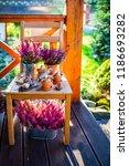 bulbs of flowers ready for... | Shutterstock . vector #1186693282
