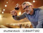 winemaker tasting red wine in... | Shutterstock . vector #1186697182