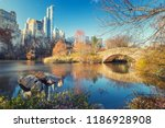 the pond in central park in new ... | Shutterstock . vector #1186928908