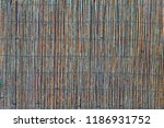 the texture of the dry reeds....   Shutterstock . vector #1186931752