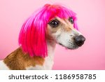 lovely dog profile side in pink ... | Shutterstock . vector #1186958785