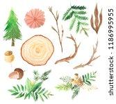 set of green watercolor pine... | Shutterstock . vector #1186995955
