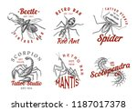 set of insects logos. vintage... | Shutterstock .eps vector #1187017378