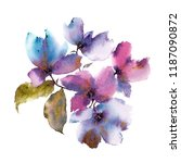 floral bouquet. watercolor... | Shutterstock . vector #1187090872