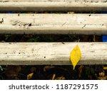 Wet Single Yellow Fallel Leaf...