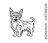 yorkshire terrier dog  ... | Shutterstock .eps vector #1187350105