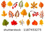 autumn colorful leaves set... | Shutterstock .eps vector #1187453275