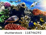 coral and fish in the red sea... | Shutterstock . vector #118746292