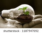 hand hold lightbulb with plant... | Shutterstock . vector #1187547052