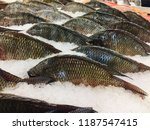 fish at the market. traditional ... | Shutterstock . vector #1187547415