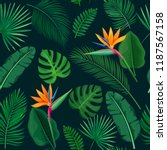 tropical leaves and flowers... | Shutterstock .eps vector #1187567158
