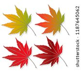 leaf autumn colorful vector... | Shutterstock .eps vector #1187645062