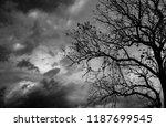 silhouette dead tree  on dark... | Shutterstock . vector #1187699545
