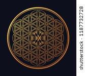 flower of life   intersecting... | Shutterstock .eps vector #1187732728