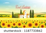 Rural Landscape With A Field Of ...