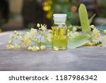 linden essential oil bottle... | Shutterstock . vector #1187986342