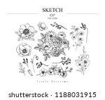 sketch floral botany set. peony ... | Shutterstock .eps vector #1188031915