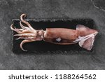 fresh raw whole squid on slate... | Shutterstock . vector #1188264562