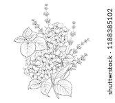 floral design of lavender and... | Shutterstock .eps vector #1188385102