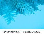 blue autumn leaf fern on a soft ... | Shutterstock . vector #1188399232