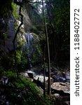 curtis falls in mount tamborine | Shutterstock . vector #1188402772